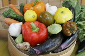 Vegetable-Bounty1