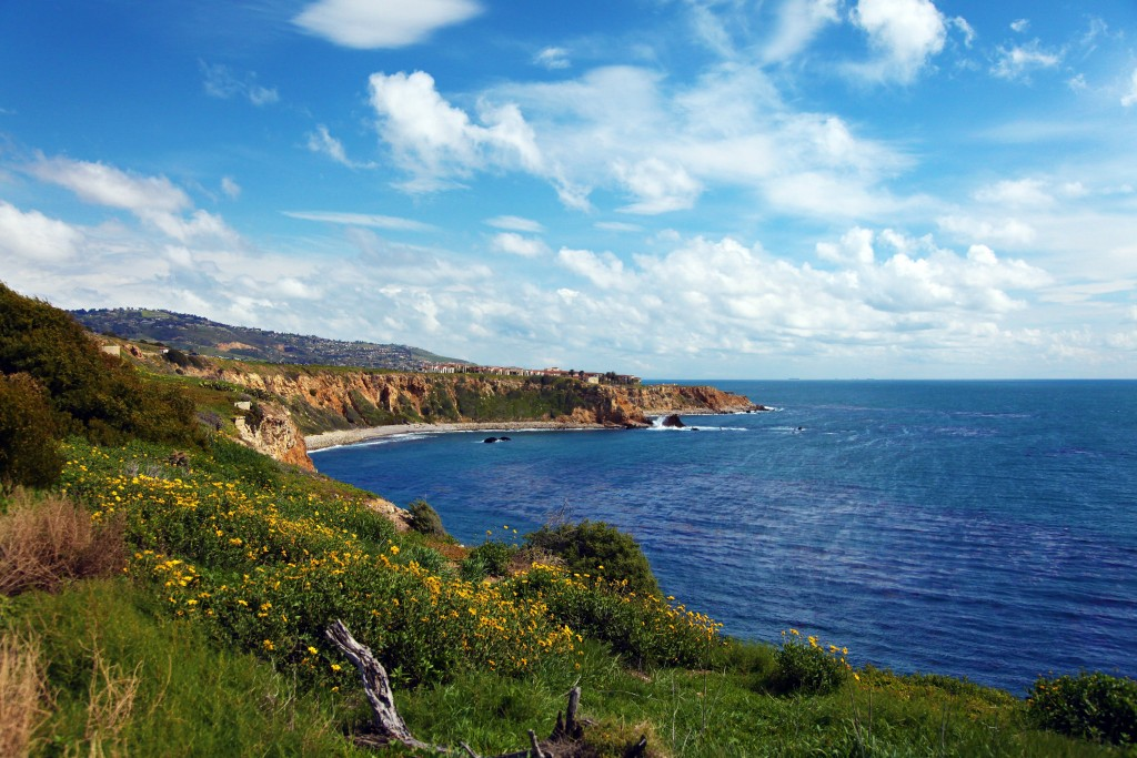 Abalone Cove in Palos Verdes