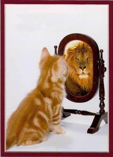 mirror-self-reflection-image11