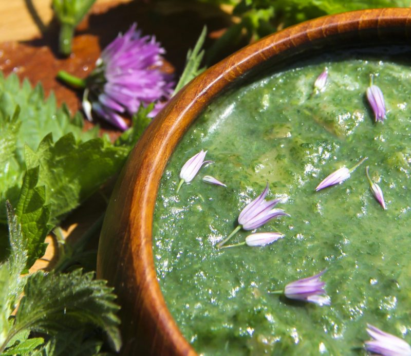 Very Nettle Wild Soup